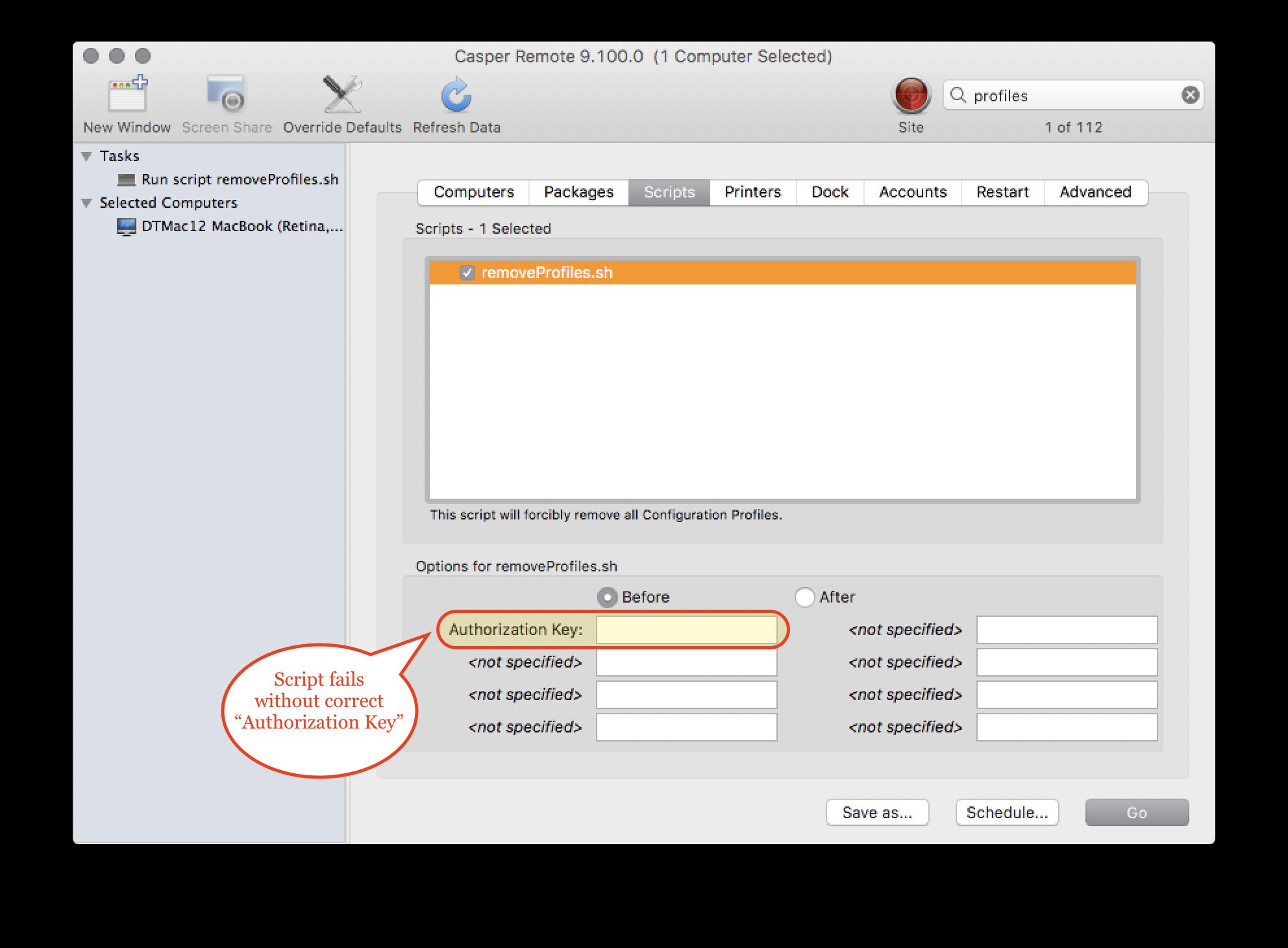 Authorization Key for scripts executed via Casper Remote